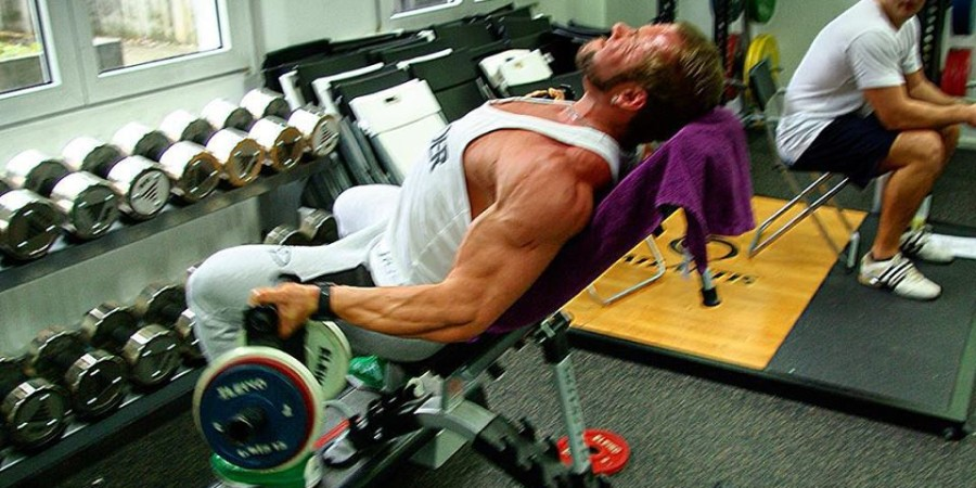 daniel-harder-wbff-pro-arms-biceps-incline-curl-long-head